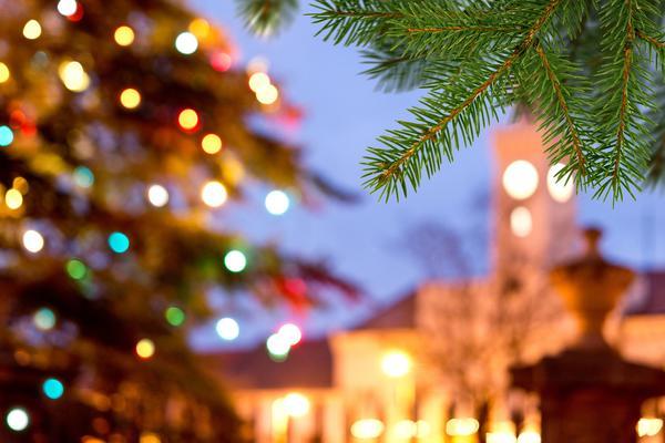 Unfocused photo of lights shining on an outdoor Christmas tree