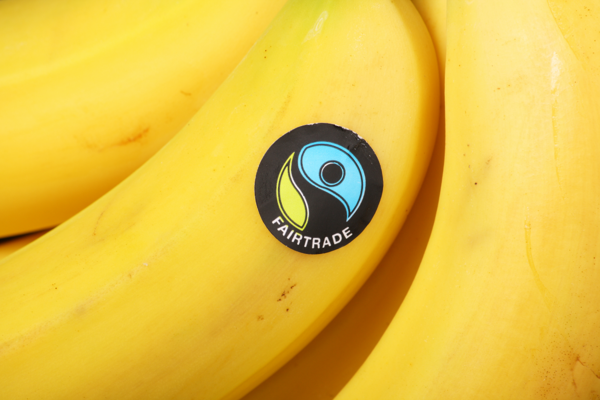 Photo of a bunch of bananas with Fairtrade sticker