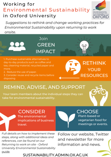 Infographic detailing suggestions for ways to rethink and change working practices for Environmental Sustainability