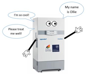 Ollie the freezer
