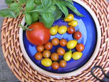 Photo of various size and coloured tomatoes on a plate